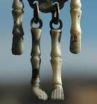 149 skeleton 44659
