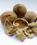 181 walnuts 705997