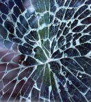 207 cracked glass 48439
