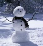 334 snowman 898306