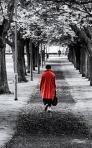 414 red_coat 860877