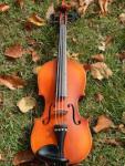 519 violin 931550