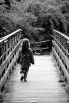 534 bridge girl 222089