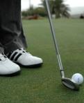541 golfer 174455