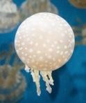 599 jellyfish 911935