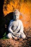613 Buddha 877719