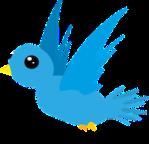 1016-bird-548654_640
