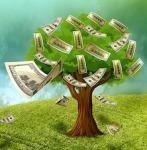 1020-cash-1169650_640