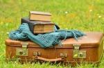1048-luggage-1482697_640